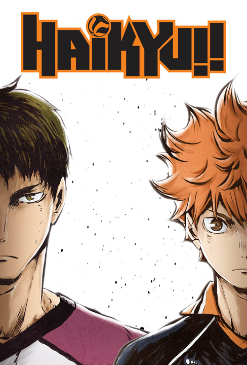 Haikyuu!! S3 Sports Anime of the Year